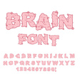 Brain font Letters from Central department human vector image vector image