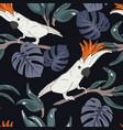 cockatoo parrot pattern wildlife bird cloth vector image vector image
