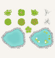 lake and trees set in top view pond decorative vector image vector image