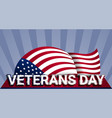 military us veterans day concept background vector image