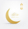 ramadan backgrounds crescent moon vector image