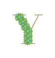 wooden leaves letter y vector image