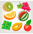 Collection of fresh fruits vector image vector image