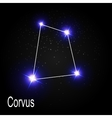 Corvus Constellation with Beautiful Bright Stars vector image vector image