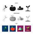design of and symbol collection of vector image vector image