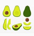 ecologic and organic avocado set vector image vector image