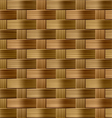 seamless wicker pattern vector image vector image