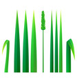 strong grass icon realistic style vector image vector image