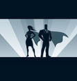 superhero business couple vector image vector image