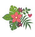 tropical exotic plants in fresh floristic summer vector image vector image