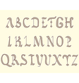Alphabet Vatican eighth century vector image vector image