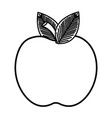 apple fruit isolated icon vector image vector image