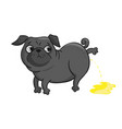 cute pug isolated on white background vector image vector image
