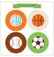 Flat Sport Balls Website Icons Set vector image