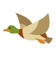 Flying duck on isolated background vector image vector image