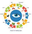 healthy eyes foods infographics healthy eyes vector image vector image