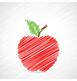 Red sketch apple design vector image