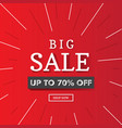 big sale 70 off banner vector image vector image