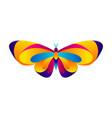 colorful butterfly bright abstract insect vector image