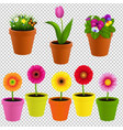 flower in pot collection vector image vector image