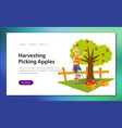 harvesting flat poster vector image vector image
