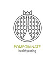 pomegranate line icon vector image vector image