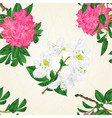 seamless texture flowers white and pink vector image vector image