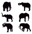 set editable silhouettes african elephants in vector image