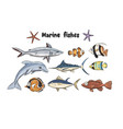 set with underwater fishes vector image vector image