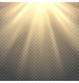 sunlight on transparent background vector image vector image