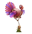 Balloon in the shape of a Turkey holidays symbol vector image vector image