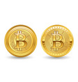 crypto currency golden bitcoin vector image