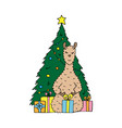 cute hand-drawn lama with gifts vector image