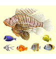 Different kind of fish vector image vector image