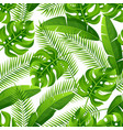 seamless pattern with tropical palm leaves exotic vector image vector image