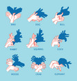 shadow theater hands gesture like flying bird vector image vector image