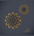 two ornamental gold flower oriental mandalas on vector image