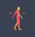 walking man 3d human body model vector image vector image
