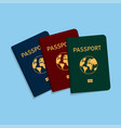 covers of passports of different colors vector image vector image