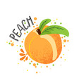 hand draw peach orange ripe vector image vector image