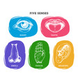 icons set of five human senses in engraved style vector image vector image