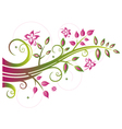 Tendril leaves tree vector image vector image