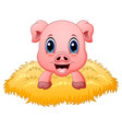 cute pig cartoon in the nest vector image vector image