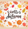 hello autumn banner in frame autumn leaves vector image