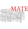 mates word cloud concept vector image