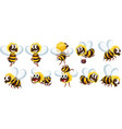 set of bee character vector image