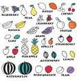 Set of doodle fruits - for scrapbook or design