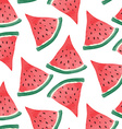 watercolor watermelon background vector image