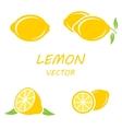 flat lemon icons set vector image