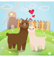 alpacas couple vector image vector image